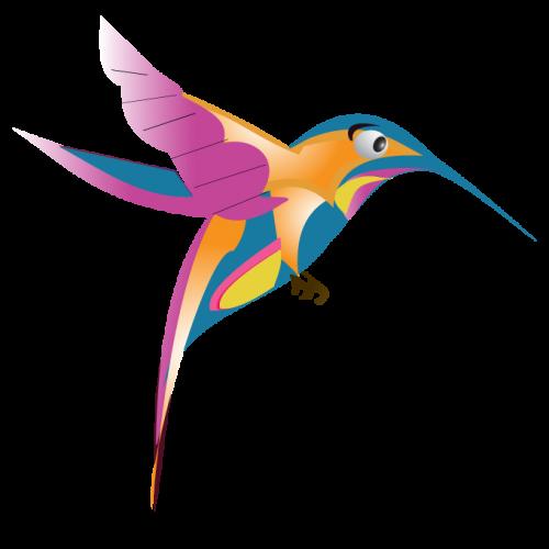 google-hummingbird-free-image-thoughtshift-04