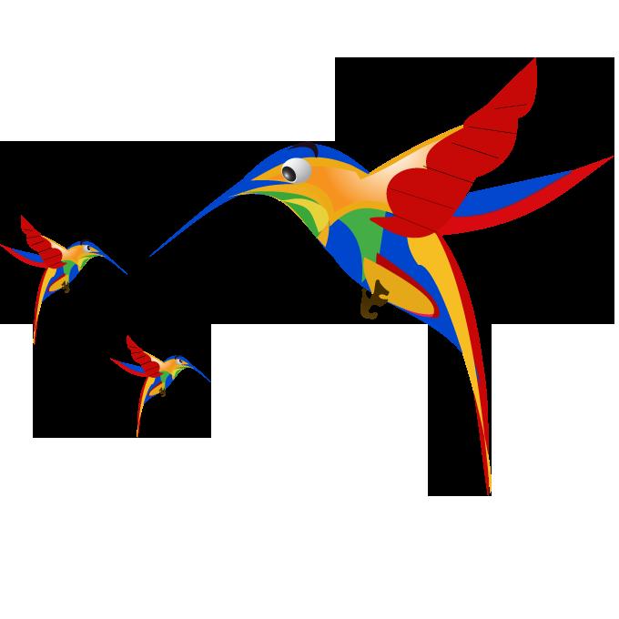 google-hummingbird-free-image-thoughtshift-05