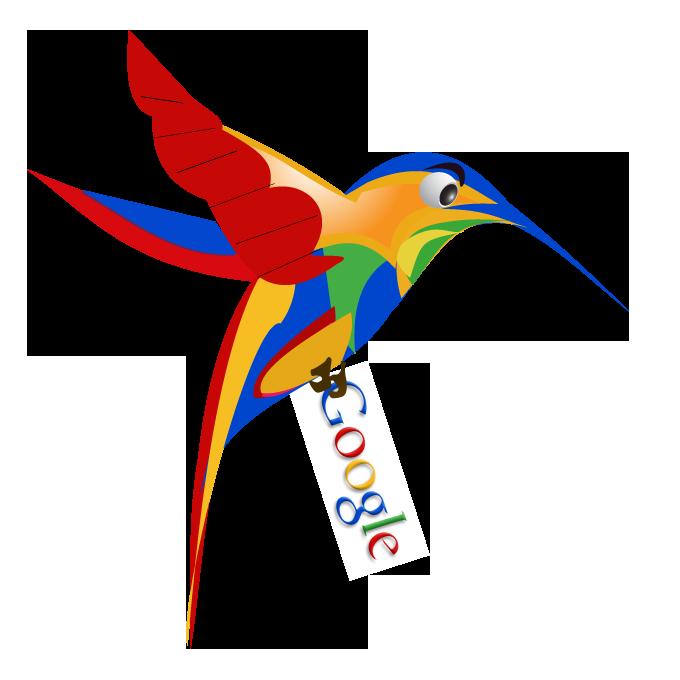 google-hummingbird-free-image-thoughtshift-06