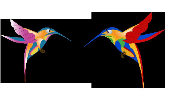 google-hummingbird-free-image-thoughtshift-10