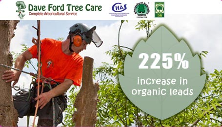 Dave Ford Tree care screen grab with stats