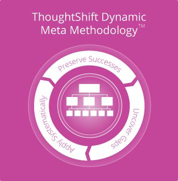 dynamic meta methodology graphic