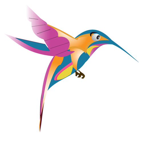 Hummingbird Graphic