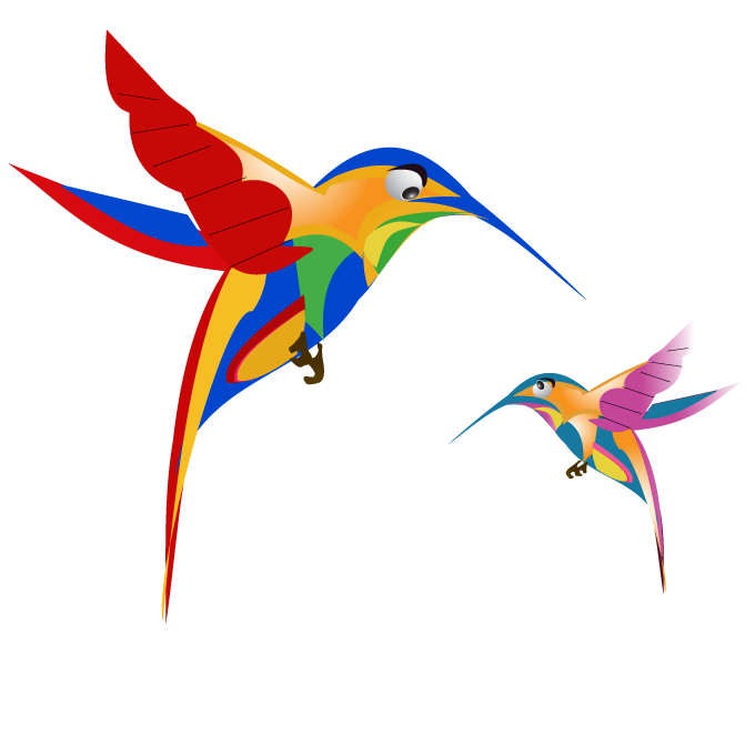 google-hummingbird-free-image-thoughtshift-01