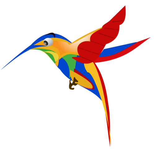 google-hummingbird-free-image-thoughtshift-03