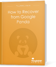 How to Rexcover from Google Panda - Cover