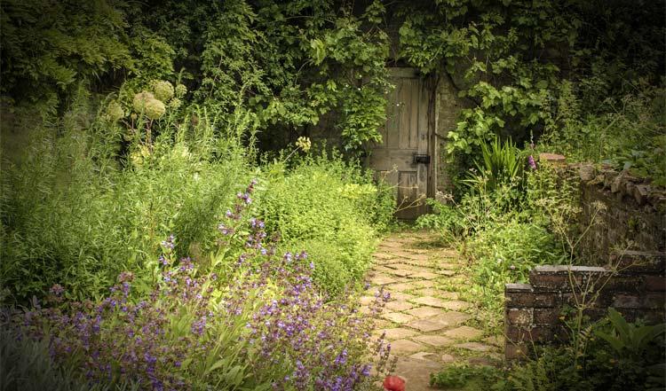 A secret garden - photo