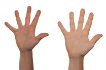 Photograph of hands