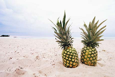 2 Pineapples on a beach