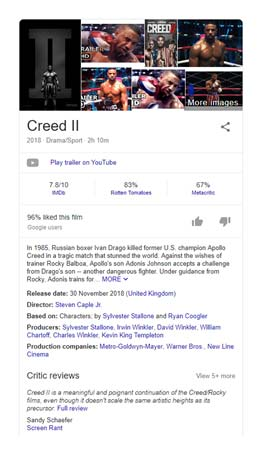 Google knowledge panel screenshot