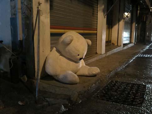 Sad bear slumped in the street