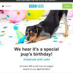 Email Marketing Automation Example for Pet Supplies